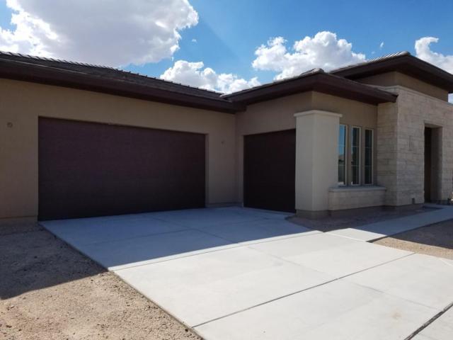 30056 N 132ND Drive, Peoria, AZ 85383 (MLS #5643159) :: Desert Home Premier