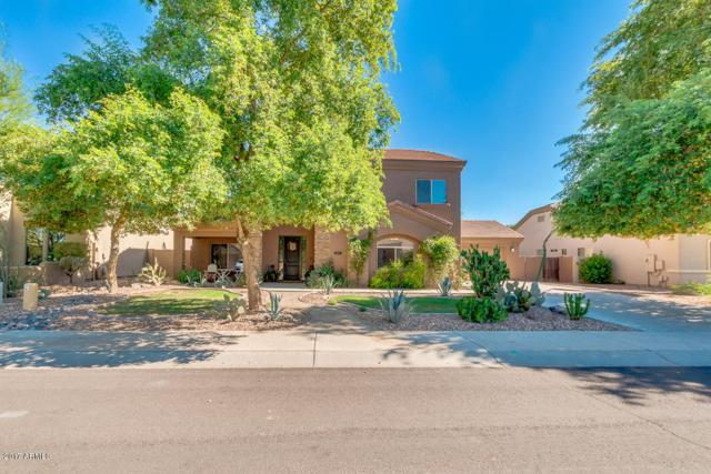 20271 E Appaloosa Drive, Queen Creek, AZ 85142 (MLS #5643718) :: The Pete Dijkstra Team