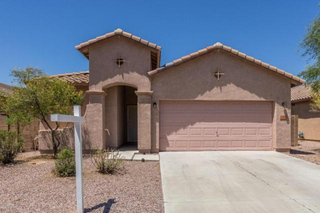 17928 N 170TH Lane, Surprise, AZ 85374 (MLS #5643810) :: The AZ Performance Realty Team