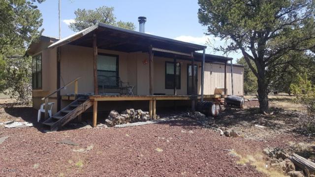 10598 N Dry Gulch Trail, Williams, AZ 86046 (MLS #5644161) :: The Daniel Montez Real Estate Group