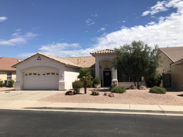 17818 W Club Vista Drive, Surprise, AZ 85374 (MLS #5644199) :: Desert Home Premier