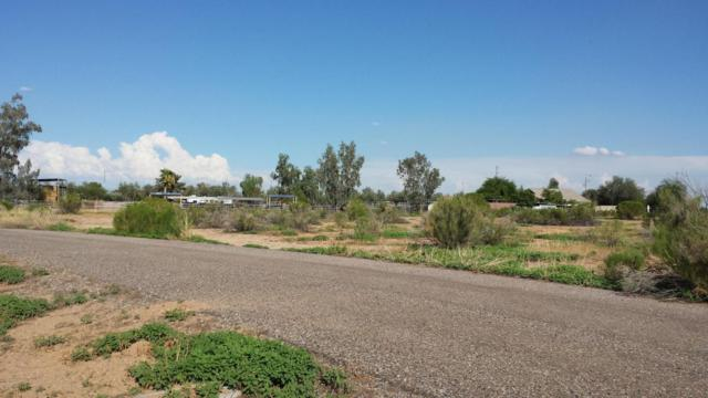 173xx W Rovey Lane, Waddell, AZ 85355 (MLS #5644404) :: Kortright Group - West USA Realty