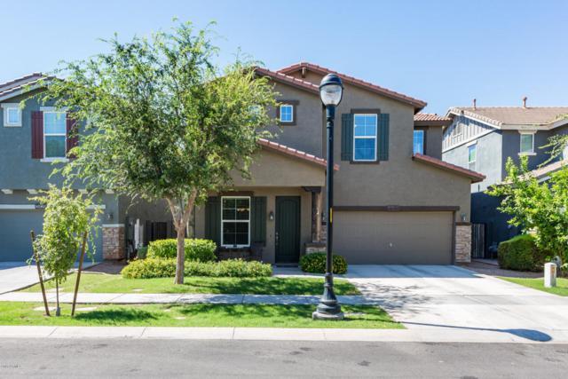 3425 E Mesquite Street, Gilbert, AZ 85296 (MLS #5644412) :: The Bill and Cindy Flowers Team