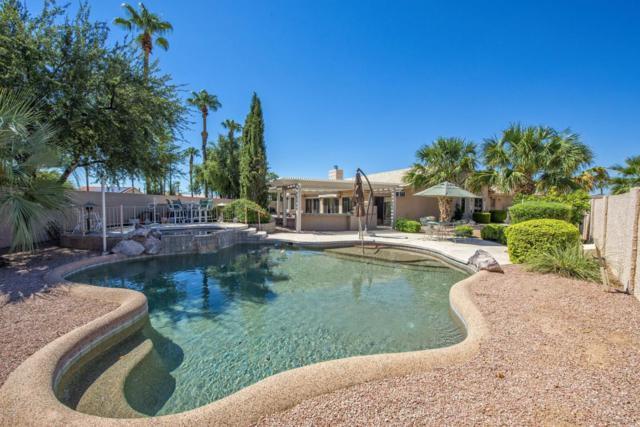 15250 W Amelia Drive, Goodyear, AZ 85395 (MLS #5644662) :: Desert Home Premier