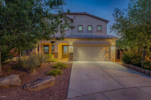 40919 N Parker Court, Phoenix, AZ 85086 (MLS #5645036) :: Cambridge Properties