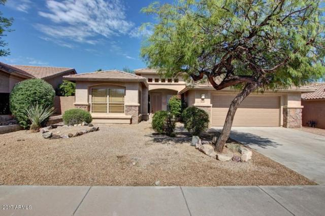 11414 S Morningside Drive, Goodyear, AZ 85338 (MLS #5645087) :: Essential Properties, Inc.