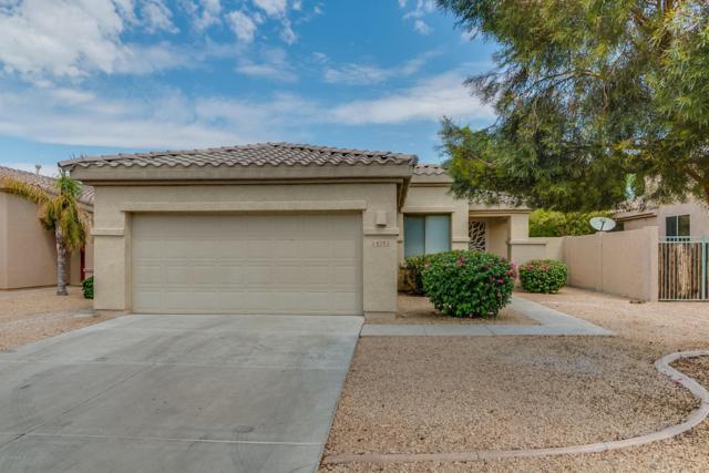 14282 W Verde Lane, Goodyear, AZ 85395 (MLS #5645427) :: Kortright Group - West USA Realty
