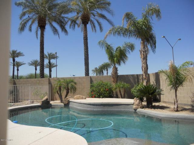 3204 N 146TH Avenue, Goodyear, AZ 85395 (MLS #5645558) :: Kortright Group - West USA Realty