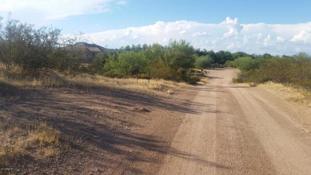 277XX N 143RD Street, Scottsdale, AZ 85262 (MLS #5645562) :: Desert Home Premier