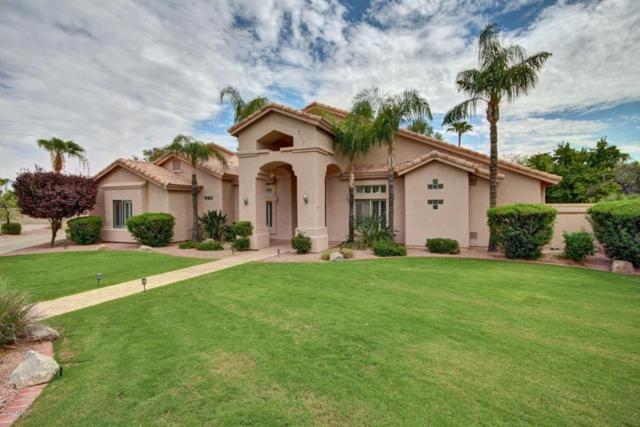 1405 W Caribbean Lane, Phoenix, AZ 85023 (MLS #5645626) :: Lifestyle Partners Team