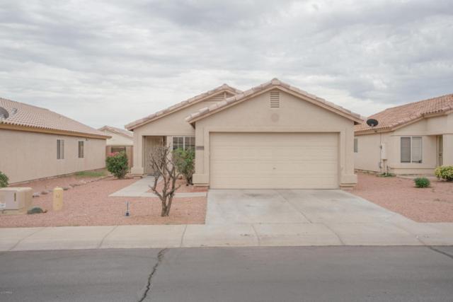12043 W Dahlia Drive, El Mirage, AZ 85335 (MLS #5645685) :: Kelly Cook Real Estate Group