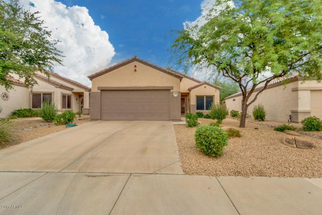 16380 W Crater Lane, Surprise, AZ 85374 (MLS #5645691) :: Desert Home Premier