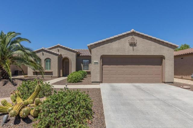 20900 N Canyon Whisper Drive, Surprise, AZ 85387 (MLS #5645877) :: Desert Home Premier