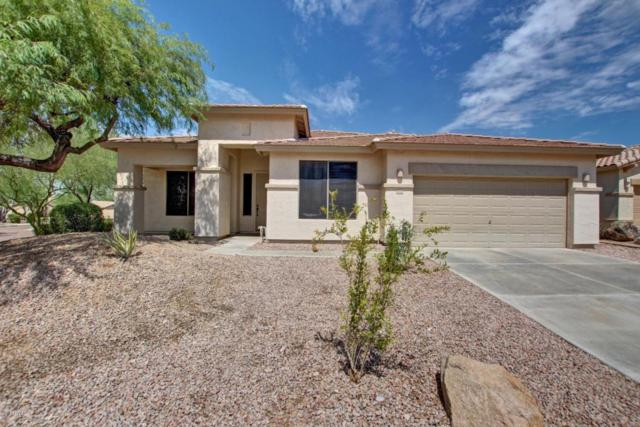 10111 S 184TH Drive, Goodyear, AZ 85338 (MLS #5645918) :: Kortright Group - West USA Realty