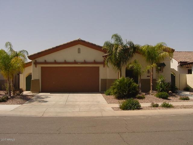 807 W Sycamore Court, Litchfield Park, AZ 85340 (MLS #5645934) :: Kortright Group - West USA Realty