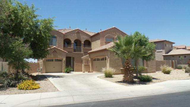 4240 N 157th Avenue, Goodyear, AZ 85395 (MLS #5645965) :: Essential Properties, Inc.