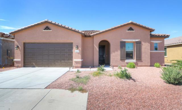 42132 W Cribbage Road, Maricopa, AZ 85138 (MLS #5645997) :: Santizo Realty Group