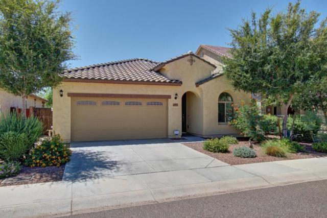 5533 W Buckskin Trail, Phoenix, AZ 85083 (MLS #5646015) :: The Laughton Team