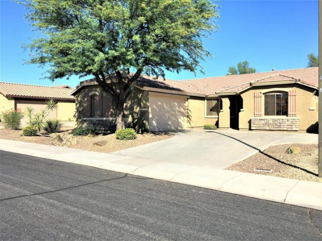 40619 N Panther Creek Trail, Anthem, AZ 85086 (MLS #5646035) :: Desert Home Premier