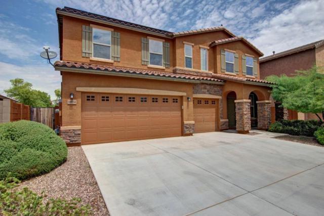 16934 W Hilton Avenue, Goodyear, AZ 85338 (MLS #5646047) :: Kortright Group - West USA Realty