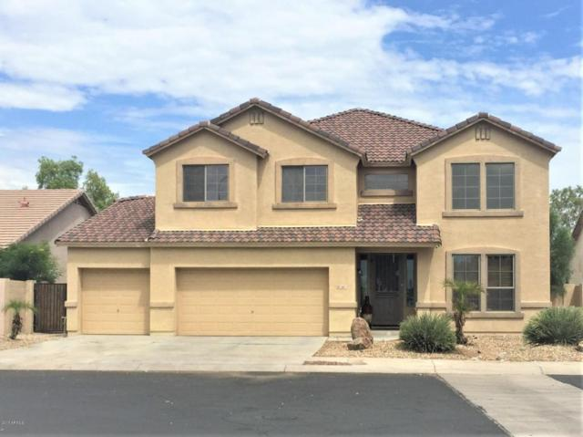 2817 N 103rd Avenue, Avondale, AZ 85392 (MLS #5646196) :: Kortright Group - West USA Realty