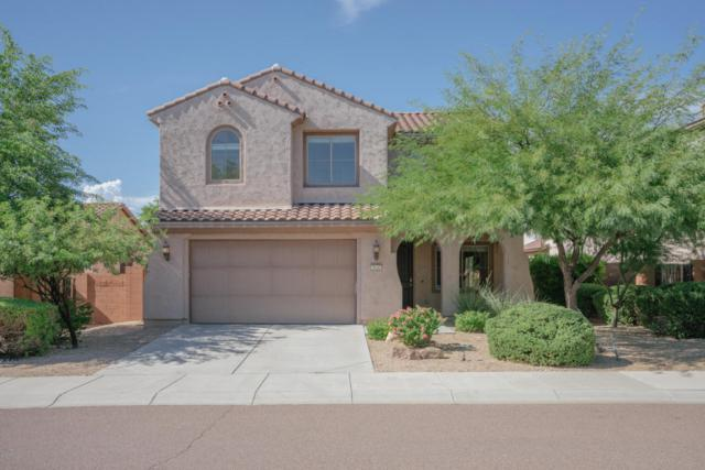 9046 W Iona Way, Peoria, AZ 85383 (MLS #5646223) :: The Laughton Team