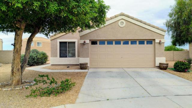 15220 N Tonya Street, El Mirage, AZ 85335 (MLS #5646273) :: Kelly Cook Real Estate Group
