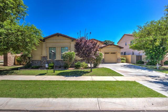 4081 E Bruce Avenue, Gilbert, AZ 85234 (MLS #5646441) :: The Bill and Cindy Flowers Team