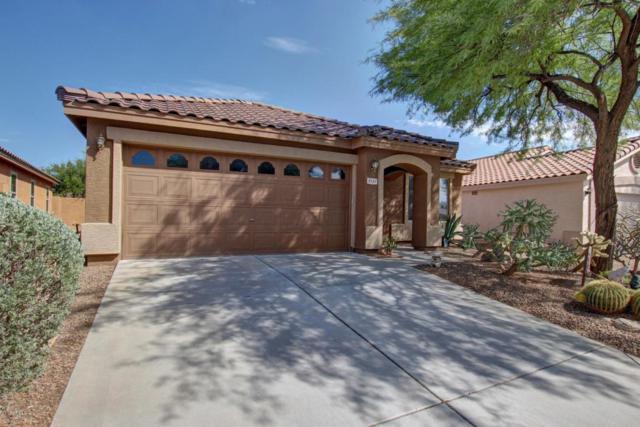 5121 E Mark Lane, Cave Creek, AZ 85331 (MLS #5646444) :: Kelly Cook Real Estate Group