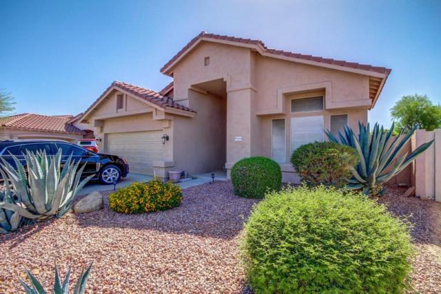 31014 N 44TH Place, Cave Creek, AZ 85331 (MLS #5646473) :: Kelly Cook Real Estate Group