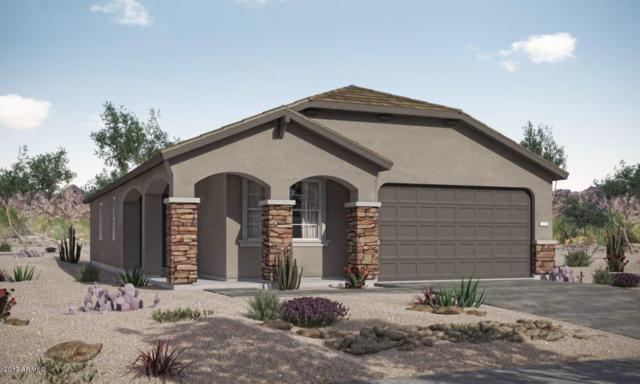 2233 W Betty Elyse Lane, Phoenix, AZ 85023 (MLS #5646513) :: Kortright Group - West USA Realty
