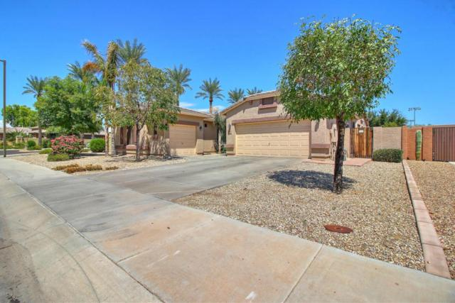 2747 N 144TH Drive, Goodyear, AZ 85395 (MLS #5646540) :: Essential Properties, Inc.