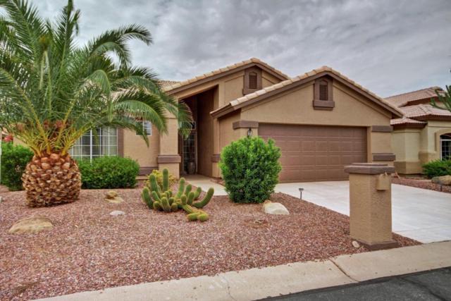 15407 W Merrell Street, Goodyear, AZ 85395 (MLS #5646561) :: Desert Home Premier