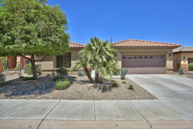 16024 W Edgemont Avenue, Goodyear, AZ 85395 (MLS #5646678) :: Kortright Group - West USA Realty