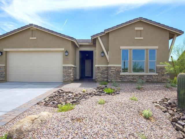 19411 S 182nd Avenue, Goodyear, AZ 85338 (MLS #5646688) :: Kortright Group - West USA Realty