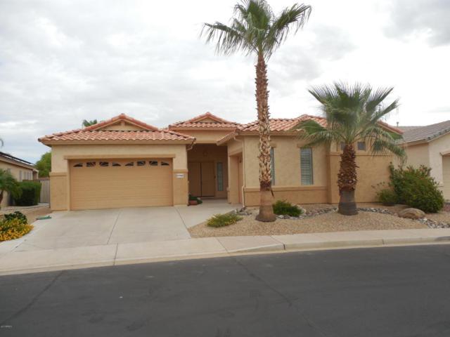 17790 W Sammy Way, Surprise, AZ 85374 (MLS #5646698) :: Desert Home Premier