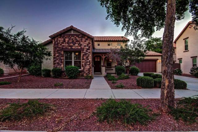 20906 W Cora Vista Vista, Buckeye, AZ 85396 (MLS #5646707) :: Kortright Group - West USA Realty