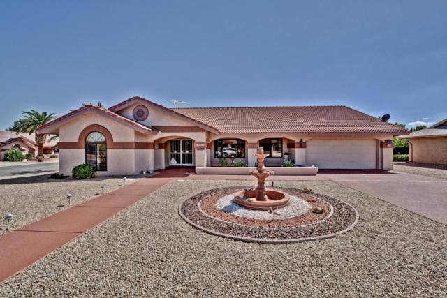 14203 W Parkland Drive, Sun City West, AZ 85375 (MLS #5646716) :: Kelly Cook Real Estate Group