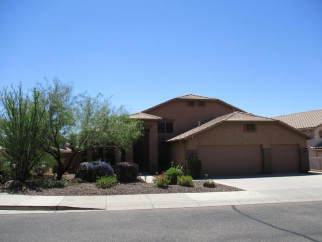 7473 E Glenn Moore Road, Scottsdale, AZ 85255 (MLS #5646755) :: Occasio Realty