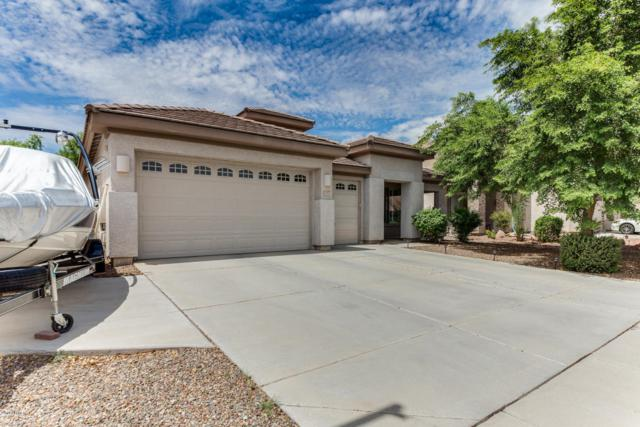 14906 N 146TH Lane, Surprise, AZ 85379 (MLS #5646761) :: Kortright Group - West USA Realty