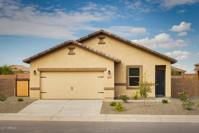 13241 E Lupine Lane, Florence, AZ 85132 (MLS #5646805) :: Kortright Group - West USA Realty