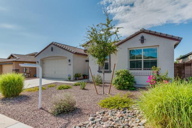 18455 W Statler Street, Surprise, AZ 85388 (MLS #5646812) :: Kortright Group - West USA Realty