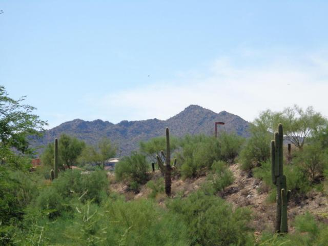 16405 E Segundo Drive, Fountain Hills, AZ 85268 (MLS #5646828) :: Kelly Cook Real Estate Group