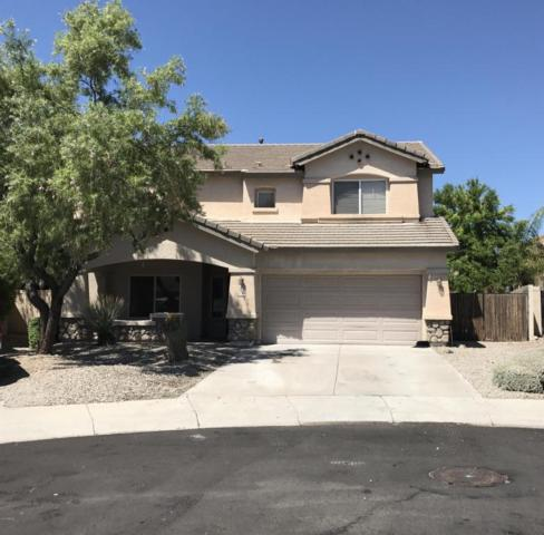 14295 W Indianola Avenue, Goodyear, AZ 85395 (MLS #5646957) :: Kortright Group - West USA Realty