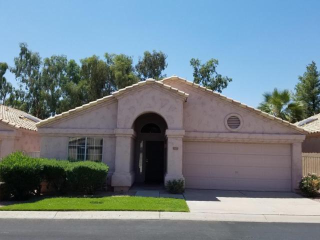 14477 W Winding Trail, Surprise, AZ 85374 (MLS #5647009) :: Desert Home Premier