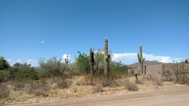 167XX W Quail Run Road N, Unincorporated County, AZ 00000 (MLS #5647061) :: The Laughton Team