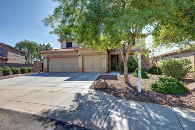 15452 N 178TH Drive, Surprise, AZ 85388 (MLS #5647065) :: Kortright Group - West USA Realty