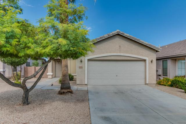 3206 N 127TH Lane, Avondale, AZ 85392 (MLS #5647090) :: Essential Properties, Inc.