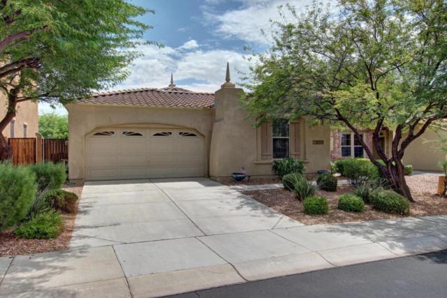 29869 N 121ST Avenue, Peoria, AZ 85383 (MLS #5647109) :: The Laughton Team