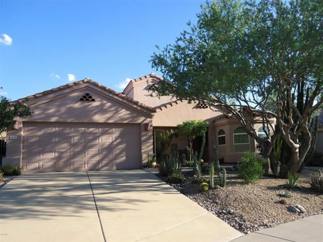 16911 E Britt Court, Fountain Hills, AZ 85268 (MLS #5647118) :: Kelly Cook Real Estate Group